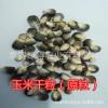 黑玉米/厂家黑玉米/黑玉米种/泰安绿得农业有限公司